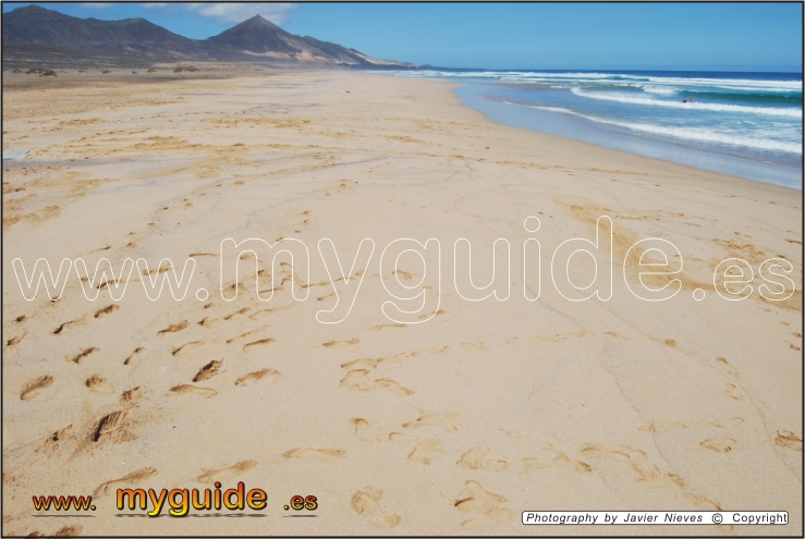 You are browsing images from the article: Cofete Beach  (barlovento) in Fuerteventura