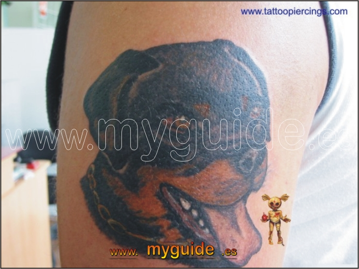 You are browsing images from the article: Puerto - Tattoo Piercing in Puerto del Rosario, Fuerteventura Island